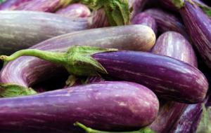 Alice Henneman Eggplant CC BY 2.0